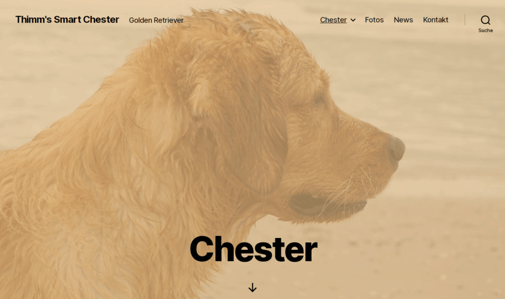 Webseite Chester